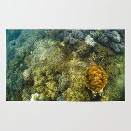 Turtle reef launch Rug