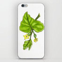 Cucumber Blooms iPhone Skin