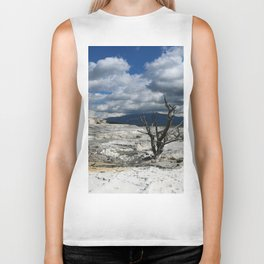 Minerva Spring and Terrace Biker Tank