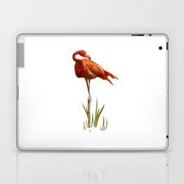 The Florida Flamingo Laptop & iPad Skin