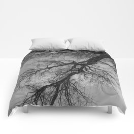 Lungs of the Earth | Nature Photography | Weeping Willow | Black and White | black-and-white | bw Comforters