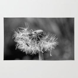 Bokehlicious black & white dandelion Rug