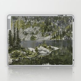 Mount Revelstoke National Park Laptop & iPad Skin