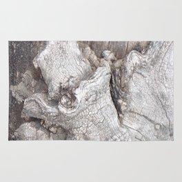 Fabulous Old Gnarled Tree Knot, Old Grey Tree, Woderful Texured Tree Rug