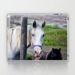 Horse Freckles Laptop & iPad Skin