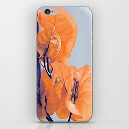 Sunny Bougainville 3 iPhone Skin