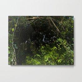 green secret Metal Print