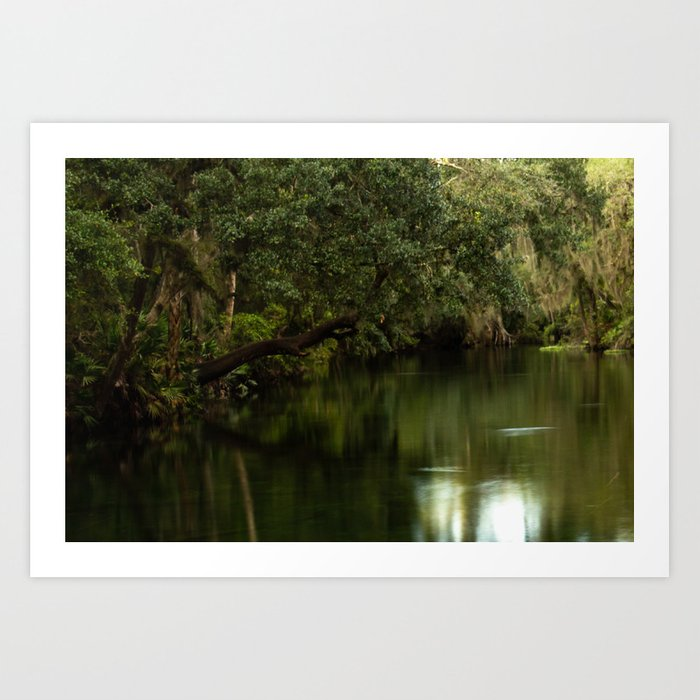Blue Springs Florida Park Long Exposure Photo Art Print