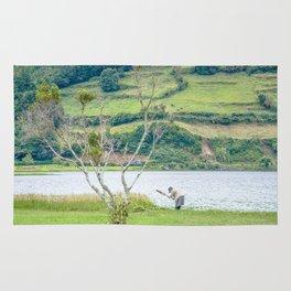Azores Sao Miguel Rug