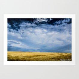 Empty Fields Art Print