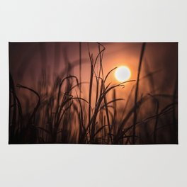 Nature Sunset Rug