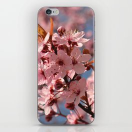 In blossom iPhone Skin