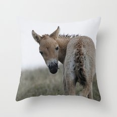 Baby Przewalski's Horse Throw Pillow