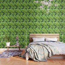 Garden of hydrangeas plants Wallpaper