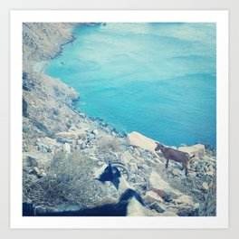 Goats on the Aegean Art Print