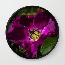 Rosa rugosa Wall Clock