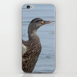 Duck take-off iPhone Skin