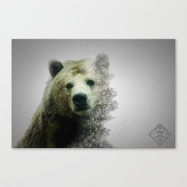 Pacific Grizzly Canvas Print