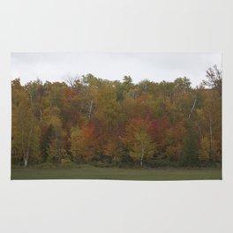 Autumn's Colors Rug