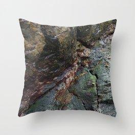 Natural Algae Covered Coastal Rock Texture Throw Pillow