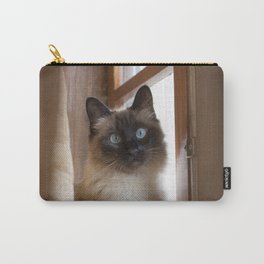 Adorable siamese cat with perfectly round blue eyes looking surprised, next to rustic wooden window. Carry-All Pouch