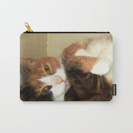 Want to take me home? Carry-All Pouch