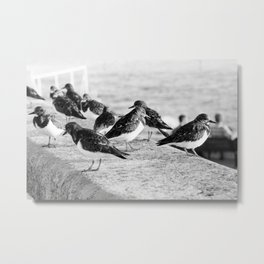 Birds and People relaxing at the beach Metal Print