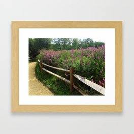 Summer Stroll Framed Art Print