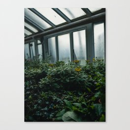 Berlin Greenhouse Canvas Print