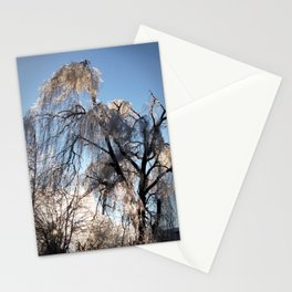 12.29.13 Ice Tree Stationery Cards