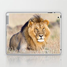 Lion King Laptop & iPad Skin