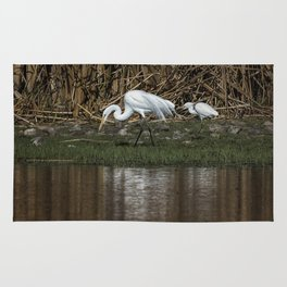 Great and Snowy Egrets, No. 2 Rug