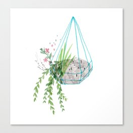 Hanging Basket Canvas Print