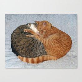 Ball of Cuteness Canvas Print
