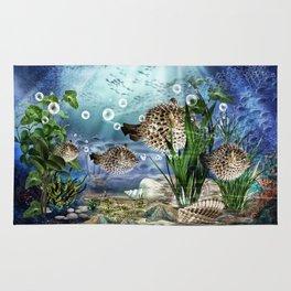 Kugelfische Rug