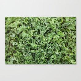 Shredded kale Canvas Print
