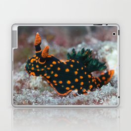 Orange-spotted Nembrotha Monster Nudibranch Laptop & iPad Skin