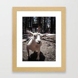 Gavin Framed Art Print