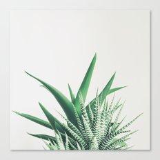 Overlap Canvas Print
