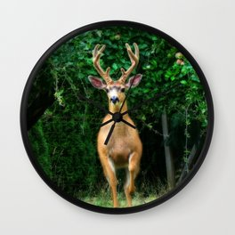 Still In Velvet Wall Clock