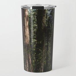 Sunlit California Redwood Forests Travel Mug