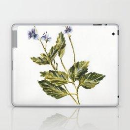Veronica chamaedrys Laptop & iPad Skin