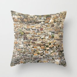 Stone Wall With Weeds Throw Pillow