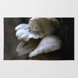 Small Oyster Mushrooms Rug