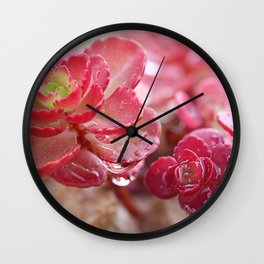 Succulent Garden Cactus Red Flowers Tropical Cacti with drops Wall Clock