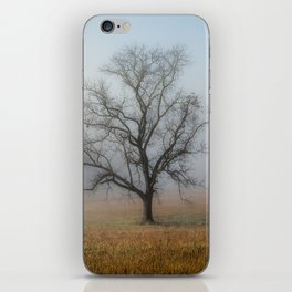 In a Fog - Mystical Morning in the Great Smoky Mountains iPhone Skin
