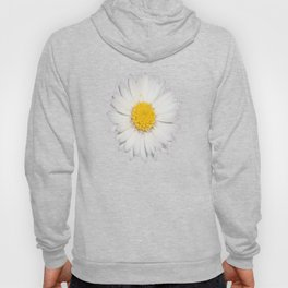 Nine Common Daisies Isolated on A Black Backgound Hoody