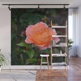 Peach Rose by Teresa Thompson Wall Mural