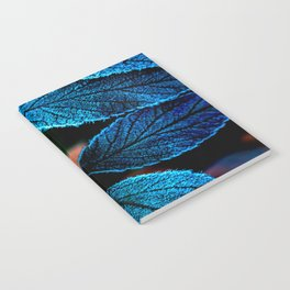 Peacock Blue Leaves Nature Background #decor #society6 #buyart Notebook