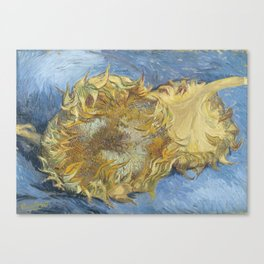 Two Sunflowers Canvas Print